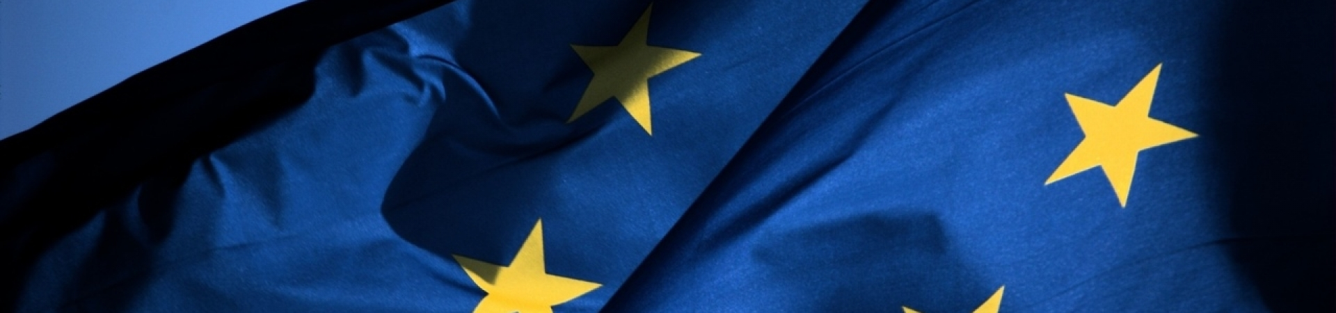 Support Business in Europe and Ukraine